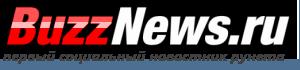 BuzzNews.ru Logo